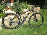 Specialized Fate Expert 29er