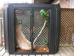BEAUTIFUL CUSTOM TERRARIUM--$100.00