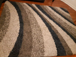 Carpet (264 cm × 200 cm ) (103 in * 78 in). $100