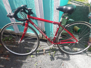24 speed street bike OBO