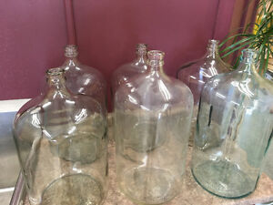 Glass carboys and fermentation pail