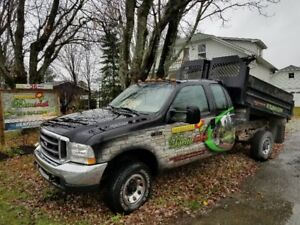 Pick-up Ford F350 2004 dompeur