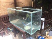 Large fish tank 4ft