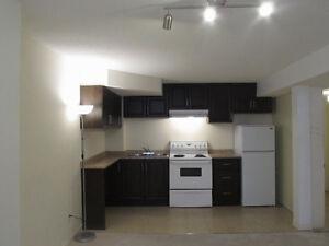 One Bedroom Basement for Rent Brampton