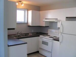 grand appartement 3.5 pièces