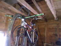 norco storm  jumper/mountain bike