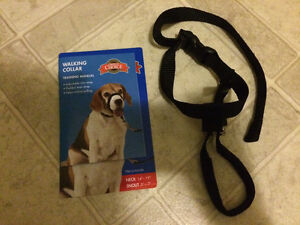 Dog trainer collar for walking.