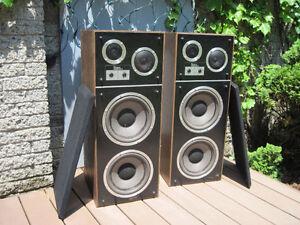 Radian Research 60W Speakers / Haut-parleurs 60W
