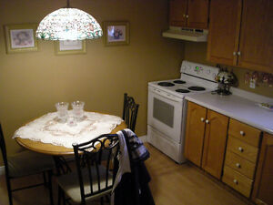 THIS WEEKEND ONLY - Prime 2 apt in Cowan Heights St. John's Newfoundland image 7