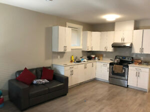 Brand New 2 Bedroom Basement