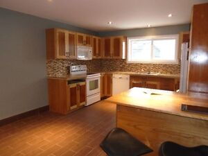 Beautiful 1 Bedroom In-Law Suite Available Aug 01, 2016