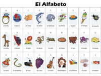 SPANISH LESSON ALL LEVELS. YOUR FLUENCY IS MY PASSION!