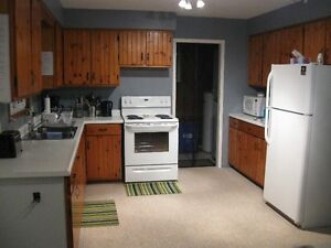Lakeview Family Cottage – Now Renting For 2017 Season Cambridge Kitchener Area image 10