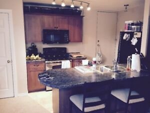 Inclusive One Bedroom Apartment, East End, Feb 1st or March 1st