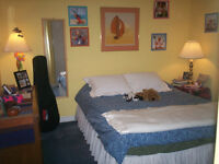 Very Clean, Comfortable, Furnished Rooms in Great Area