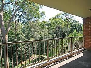 Serene Bush Setting Dundas Parramatta Area Preview