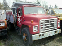 1981 International 1954 single axle dump truck