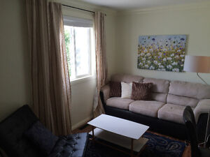 CLASSY, COZY, ONE-BEDROOM, FULLY-FURNISHED APARTMENT IN CENTRE Edmonton Edmonton Area image 1