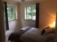 double room to rent nice and spacious located in charminster all bills inc £100