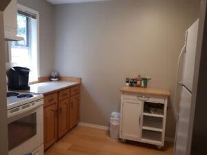 2 Bedroom Above Ground Basement Suite