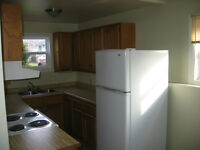 3 BDRM Duplex (lower) - F/S included, private entry/driveway