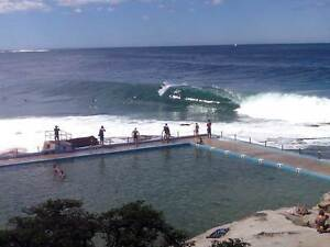 Long Turm Flatmate Wanted Dee Why Manly Area Preview