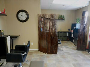 4 professional offices, paved parking, along HWY 16A Stony Plain