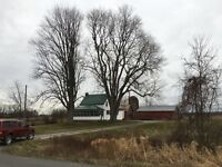 Farm House for sale privately on Tripp Rd.