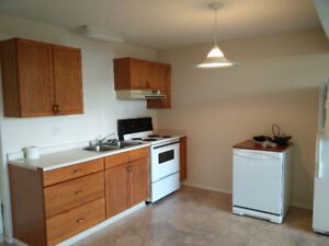 2 Bedroom Basement Suite Utilities Included and In-suite Laundry