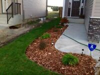 Need Landscaping? Need Sod? Need a final Grade? Need Mulch?