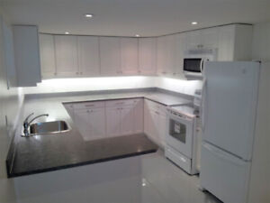 Newly Renovated 1-Bedroom Basement Suite in Cathedral