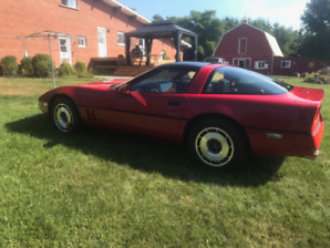 1985 CORVETTE TARGA - excellent condition