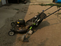 Lawnmower & 12v electric Weed Trimer