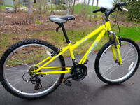 Velo Norco 24 inches
