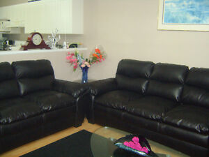 Furnished/Unfurnished 2, 3, 5 bedroom house for rent from July01
