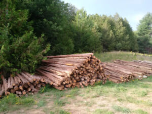Cedar - Posts, Rails, Pickets and Saw Logs