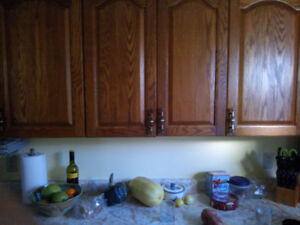 Looking for upper kitchen cabinet like this