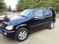 2003 Mercedes-Benz M-Class Suv For Sale