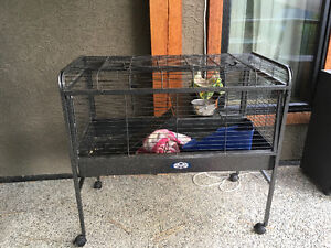 Ferret (or small animal) cage