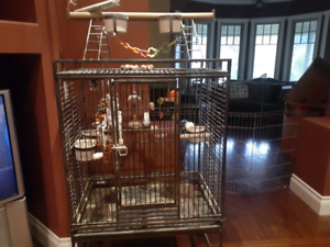 Bird cage for parrot