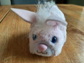 Pet bunny toy