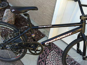 Free Agent Team Expert BMX race bike