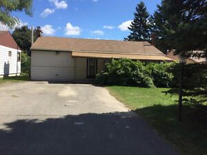 3 bedroom bungalow with basement for rent in Richmond Hill/Oak R