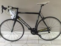 XL Boardman Team Carbon Road Bike