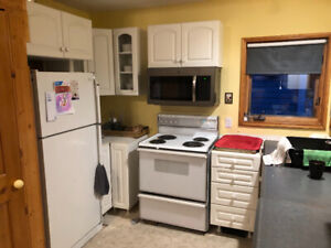 Free Dishwasher and Oven