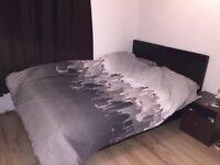 Double bedroom to rent in 3 Bedroom flat
