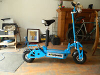 New E Wheels 36 Volt 1000w Electric Scooter
