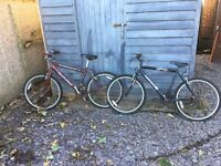 2 mountain bikes, free to collector