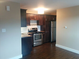 Newly Renovated One Bedroom Greystone Terrace