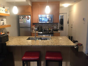 Summer SUBLET Studio Apartment in Downtown Montreal $725/month